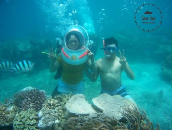 Tour đi bộ dưới nước chuyên nghiệp và chất lượng.